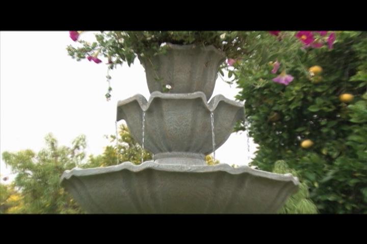 Video2 of Item: 512744